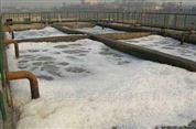 云南大型养殖污水处理设备