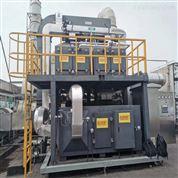 催化燃烧设备 现货供应