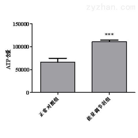 利用斑马鱼模型筛选能量调节剂(减肥产品)