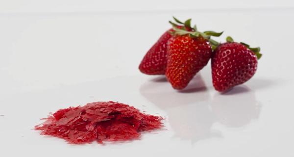 草莓冷凍干燥