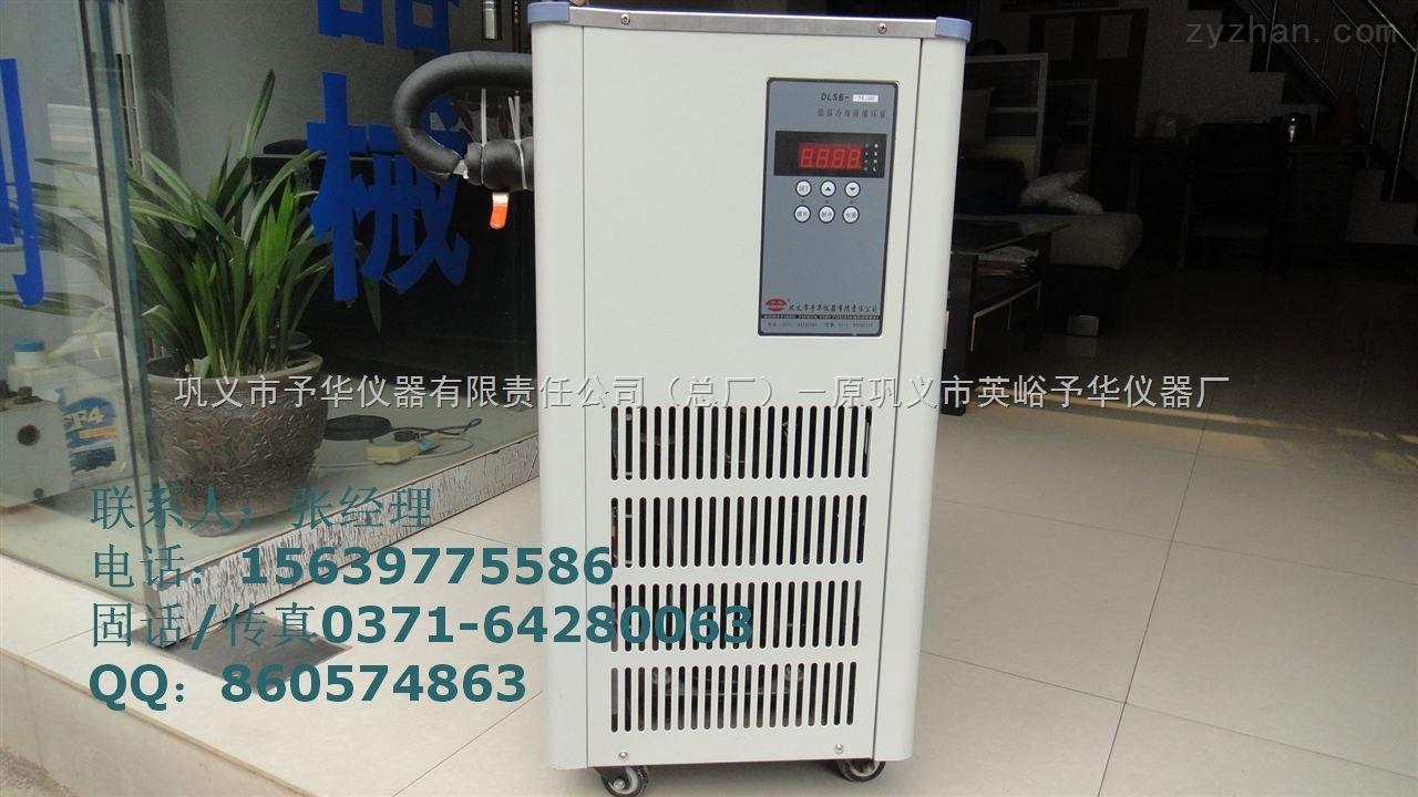 DLSB-5L-30℃低温冷却液循环泵  张